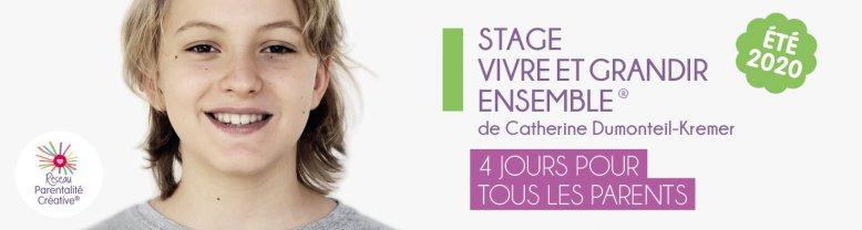 stage2020_banniere_site_web